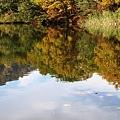 Photos: 丸池