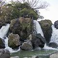 Photos: 鮎壷の滝 2012.4.7-2