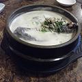 Photos: 烏骨鶏の参鶏湯