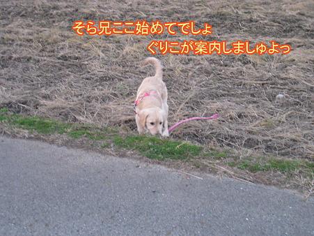 PIC00001