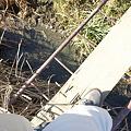 Photos: 一本橋の上から