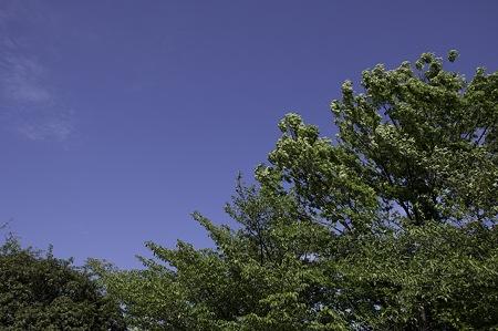 2010-05-29の空