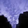 Photos: 2010-10-13の空