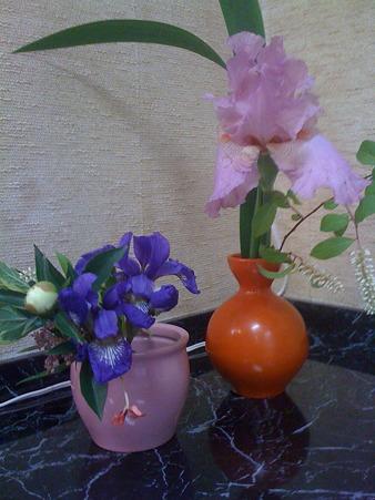 会員さんの庭に咲いていた花