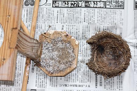 巣台にはゴミ