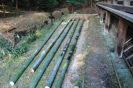 2011年01月10日_DSC_0306京田辺観音寺