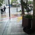 Photos: 街頭署名活動初日1