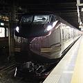 上野駅 E655系 和