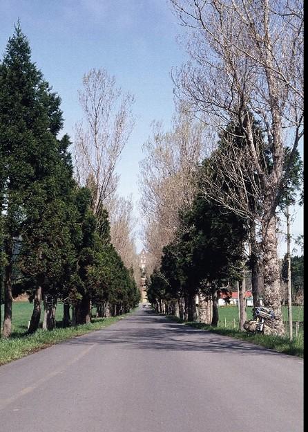 Photos: トラピスト修道院への道