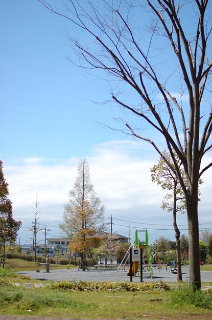 写真: 20100417_123417