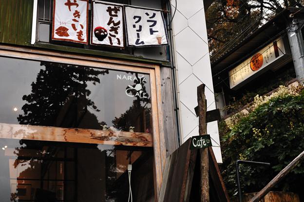 写真: 20101122_141602