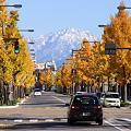富山県で撮ったぁ!
