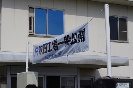 IMGP6307