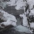 雪降る釜渕の滝