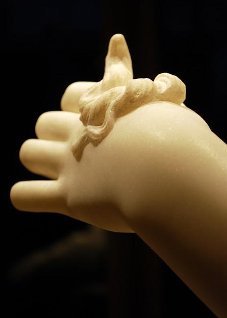 Medusa's Hand