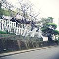 写真: 虚空蔵菩薩堂