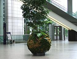 1000人の写真展 新宿パークタワービル