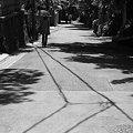 写真: 路
