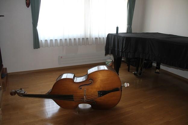 Contrabass&Piano