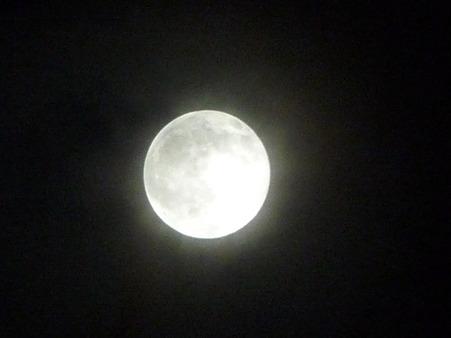 101023-お月さん (12)