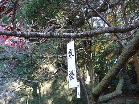 110104-久能山東照宮 (62)
