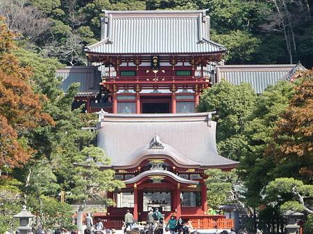 110225-鶴岡八幡宮 (29)
