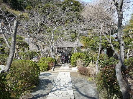 110225-明王院 特別拝観 (8)