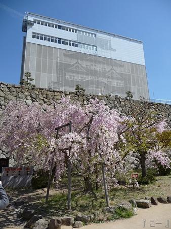 110417-姫路城 (36)