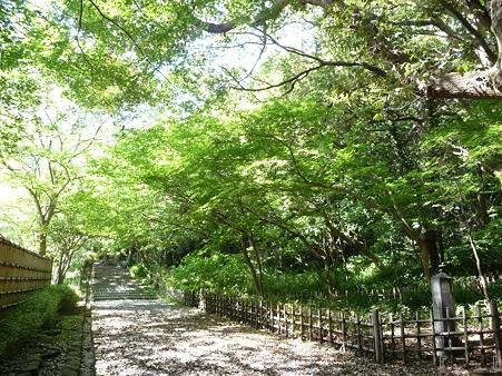 110519-鎌倉文学館 (5)