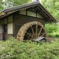府中市郷土の森博物館探訪