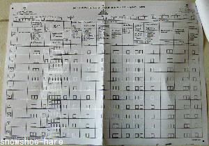 サウジ国勢調査の用紙