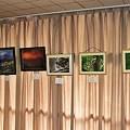 Photos: 秋の作品展