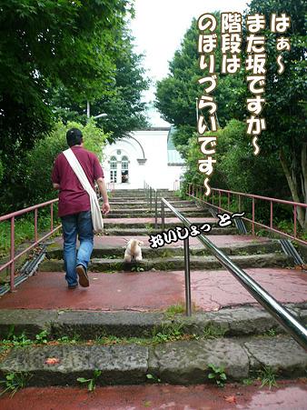 函館散歩 元町 6