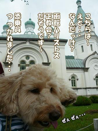 函館散歩 元町 7