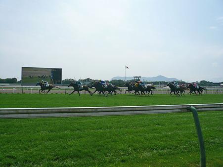 函館競馬場 1