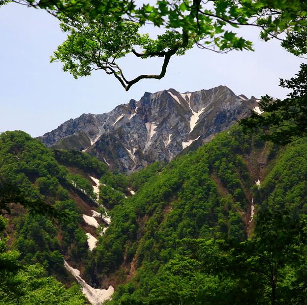 東方面からの大山 ♪