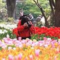Photos: 2010.04.19 横浜公園 チューリップ祭り 夢中