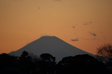 2010.12.29 外人墓地 富士山