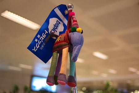 2011.01.22 トルコ 旅の旗印は添乗員さんの私物