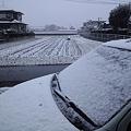 Photos: また雪が