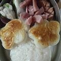 写真: 久々に今日のお弁当写真。可愛く出来た。可愛いものは癒されます。