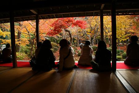 額縁の紅葉風景、円光寺!(101123)