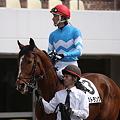 Photos: ハストラングと西谷誠騎手