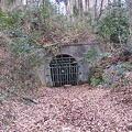 写真: 玉川神社手前トンネル