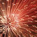 Photos: 火の花
