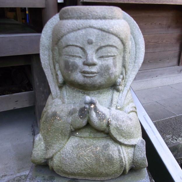 【東京|神社仏閣】 大円寺 (85)