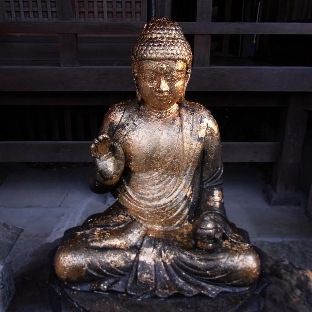 【東京|神社仏閣】 大円寺 (88)