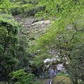 写真: 100513-5無名滝4