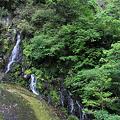 写真: 100513-6無名滝5