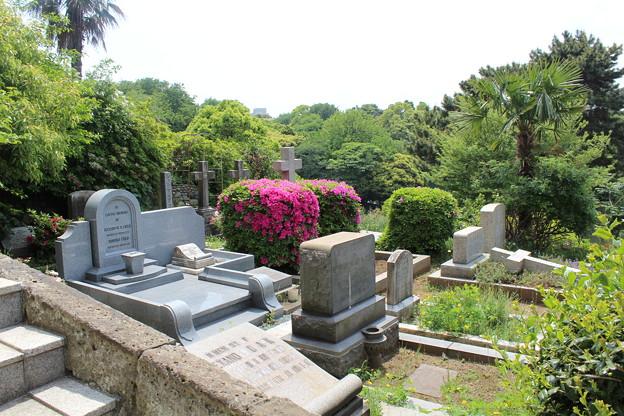 横浜外国人墓地1